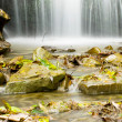 Royalty-Free Stock Photo: Small waterfall in the forest