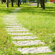 Stone walkway into woods — Stock Photo #5870162