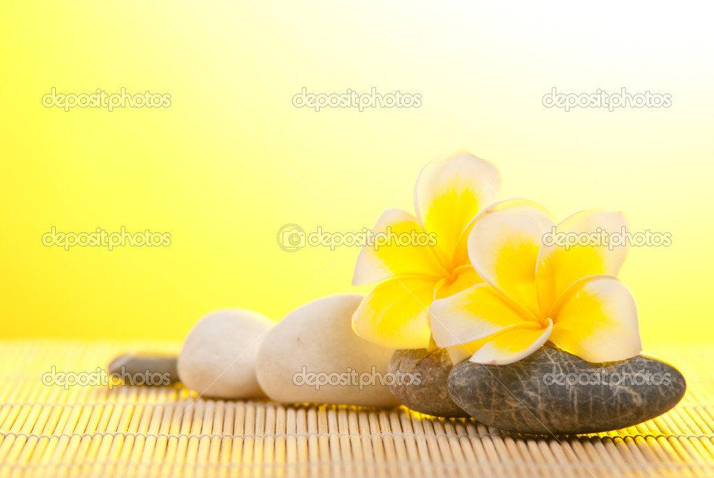 Leelawadee flower and pebbles on bamboo background under warm sunshine  Stock Photo #6145448