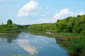 Krajobraz mały-balaton, węgry — Zdjęcie stockowe