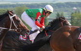 Jockeys at full gallop — Stock Photo