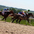 Horse racing. — Stock Photo #5963541