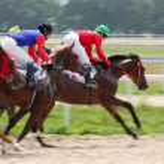 Horse racing. — Stock Photo #6250579