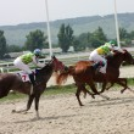 Horse racing. — Stock Photo #6269475