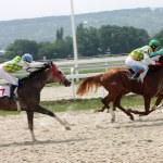 Horse racing. — Stock Photo #6291182