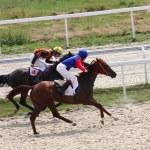 Horse racing. — Stock Photo #6294750