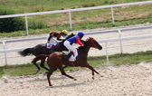 Horse racing. — Stock Photo