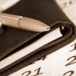 Calendar page, pen and pocket planner — Stock Photo #6588089