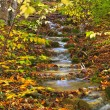 Autumn mountain cascade — Stock Photo