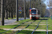 Red electric tram — Stock Photo