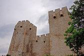 Château médiéval — Photo
