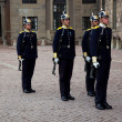 Stockholm, Sweden. A daily royal guard change. - 图库照片