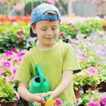 Gardener — Stock Photo #5709102