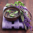Sage alternative medicine — Stock Photo #5805669