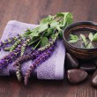 Sage alternative medicine — Stock Photo