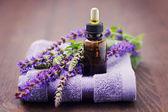 Sage essential oil — Stock Photo