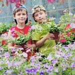 Gardeners — Stock Photo #6022843