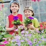 Gardeners — Stock Photo #6022853