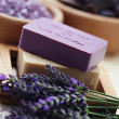 Lavender beauty — Stock Photo