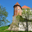 Stock Photo: Old Castle in Sandomierz