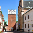 The view of Sandomierz downtown at daylight. Poland. — Stock Photo #5918291
