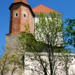 Old Castle in Sandomierz - Stock Photo