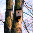 Rustic birdhouse — Stock Photo