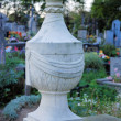 Stock Photo: Old stone vase