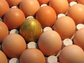 Golden egg. — Stock Photo