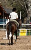 The horseman on a bay horse. Hippodrome — Stock Photo