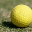 Golf Ball on the Green Grass with green background — Stock Photo