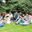 Stock Photo: Group of students sitting in park on a grass