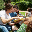 Group of students sitting in park on a grass — Stock Photo #6266671