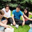 Group of students sitting in park on a grass — Stock Photo