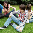 Group of students sitting in park on a grass — Stock Photo #6266872
