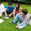 Group of college students outdoors — Stock Photo #6267294