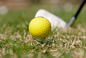 A golf ball and driver with focus on the ball — Stockfoto
