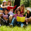Group of college students outdoors — Stock Photo #6379745