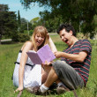 College or university students studying outdoors — Stock Photo