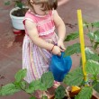 Little Gardener Outdoors — Stock Photo #6442853