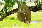 Straw hat hanging on a tree — Stock Photo