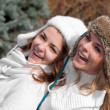 Two cheerful girls twins, in the park - Stockfoto