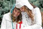Dos gemelas de chicas alegres, en el parque — Foto de Stock