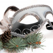 christmas branches with carnaval mask isolated on white backgrou — Stock Photo