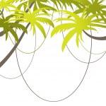 Tropical Beach Banner. vector illustration — Stock Vector