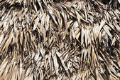 Thatched — Stock Photo