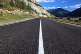 Mountain road in Russian Altai — Stock Photo