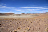 Altiplano lansdcape — Stock Photo