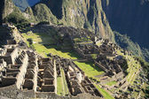 Machu Picchu ruins — Stock Photo