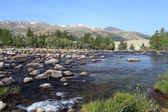 Rapid mountain river in Mongolian Altai — Stock Photo